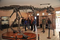Grande parque do dinossauro, onde traços destes répteis antigos Imagem de Stock Royalty Free