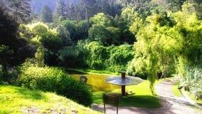 grande parque maravilhoso Imagem de Stock Royalty Free