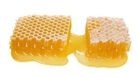 Grande parte de favo de mel da abelha com o mel líquido isolado no fundo branco, alimento saudável natural, close-up fotografia de stock royalty free