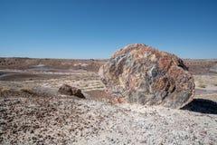 Grande parte de separação de madeira hirto de medo que tem transformado agora o log prehistroic nos minerais de pedra de cristal  imagem de stock