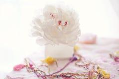 Grande peônia branca em um altar Imagem de Stock Royalty Free