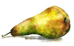 Grande, pera gialla deliziosa e succosa, pittura disegnata a mano dell'acquerello sul fondo bianco, alimento corretto, acquerello royalty illustrazione gratis