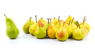 Grande pera verde - la guida delle pere team Immagine Stock