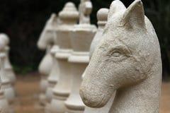 Grande pezzo degli scacchi del giardino Immagine Stock