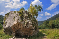 Grande pietra Fotografie Stock