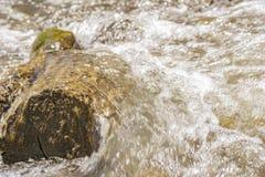 Grande pietra migliorata da acqua fotografia stock libera da diritti