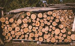 Grande pila di ceppo del legno Immagine Stock