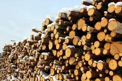 Grande pile de logarithmes naturels de bois de construction images libres de droits