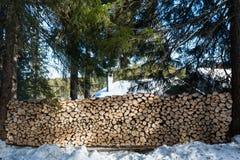 Grande pilha de madeira recentemente desbastada na luz do sol dappled nas frentes Fotografia de Stock Royalty Free