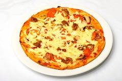 Grande pizza saporita sulla zolla bianca Immagine Stock