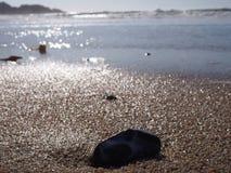 Grande plage de Sur Photo libre de droits