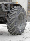 Grande pneumatico dell'industria pesante del camion Fotografie Stock