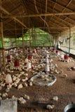 Grande pollame che eleva azienda agricola Fotografia Stock