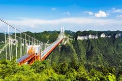 A grande ponte Foto de Stock