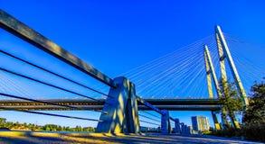 Grande ponte de Obukhov. Foto de Stock Royalty Free