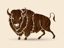 Grande position de Buffalo Photos stock
