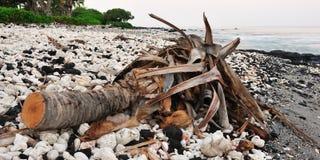 Grande primo mattino del litorale di Kona dell'isola dell'Hawai Fotografia Stock Libera da Diritti