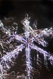 Grande priorità bassa dei cristalli della neve fotografia stock libera da diritti