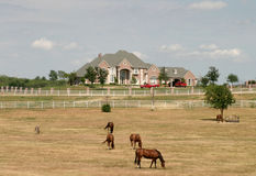 Grande proprietà rurale con i cavalli 1 Fotografia Stock