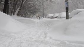 Grande queda de neve em Moscou no 4 de fevereiro de 2018 video estoque