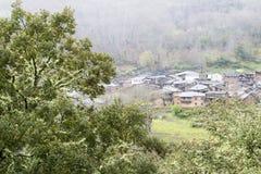 Grande quercia da sughero nelle montagne della O Courel Spagna Immagini Stock