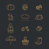 Grande raccolta delle icone lineari con differenti simboli di caduta e di autunno Abbigliamento, inceppamento, tempo, funghi, rac Fotografia Stock Libera da Diritti