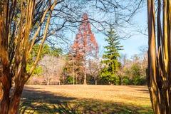 Grande radura nel parco di Lullwater, Atlanta, U.S.A. immagine stock