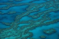 Grande recife de barreira, Austrália fotografia de stock royalty free