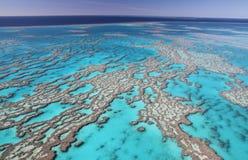 Grande recife de coral fotografia de stock