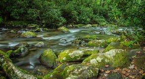 Grande rio da montanha fumarento foto de stock