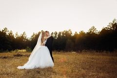 Grande ritratto di una coppia di nozze, che sta camminando nel campo immagini stock