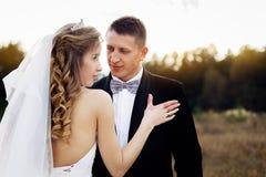 Grande ritratto di una coppia di nozze, che sta camminando nel campo fotografia stock