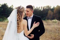 Grande ritratto di una coppia di nozze, che sta camminando nel campo immagine stock libera da diritti