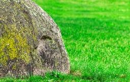 Grande roccia su erba verde Fotografia Stock Libera da Diritti