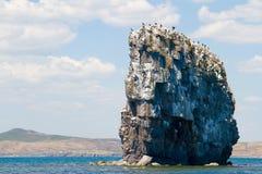 Grande roche en mer photo libre de droits