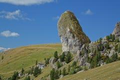 Grande roche et le paysage de prés Photo libre de droits