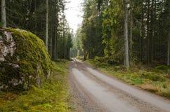 Grande roche moussue sur un côté de chemin de terre Image libre de droits