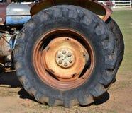 Grande rotella Fotografie Stock Libere da Diritti