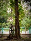Grande roue de chariot d'arbre photo libre de droits