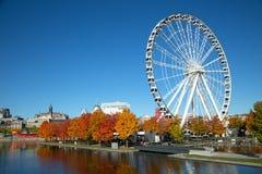 Grande roue de Montréal pendant l'automne photographie stock libre de droits
