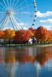 Grande roue de Montréal pendant l'automne photos libres de droits