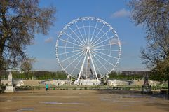 Grande Roue des Tuileries (Ferris Wheel) in Parijs, Frankrijk Royalty-vrije Stock Foto