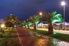 Grande roue sur la promenade de bord de mer de Batumi, la Géorgie Images libres de droits