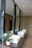 Grande salle de bains principale photographie stock libre de droits