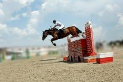 Grande salto Fotografie Stock
