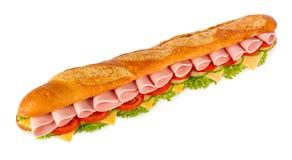 Grande sandwich Immagini Stock