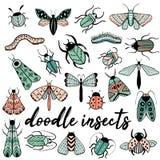 Grande scarabocchio disegnato a mano variopinto fissato con gli insetti illustrazione vettoriale
