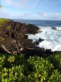Grande scogliera della spiaggia dell'isola delle Hawai immagine stock libera da diritti