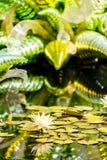 Grande scultura di vetro Fotografia Stock