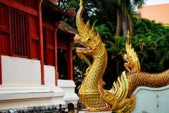 A grande serpente no templo de buddha imagens de stock royalty free